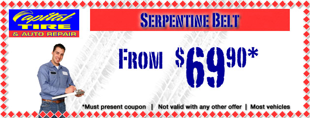 Serpentine Belt Special