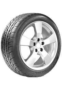 BFGoodrich g-Force Super Sport A/S H/V